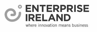 enterprise ireland - partner